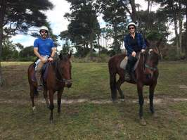 Horse riding auckland NZ Picture